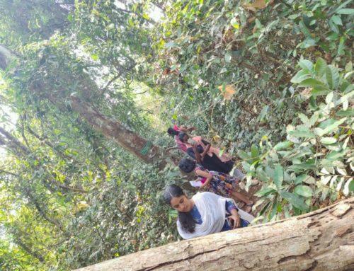 Students Visit Biodiversity Hotspot